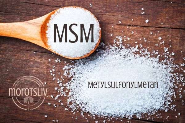 msm salva recept