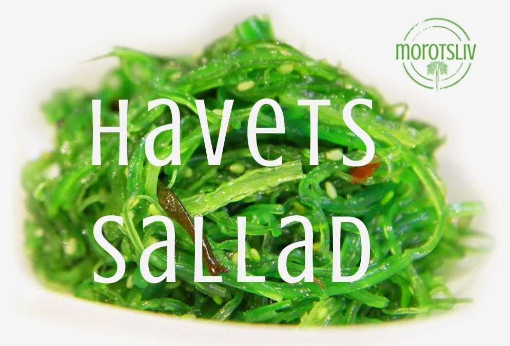 Havets sallad – alger