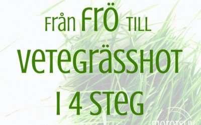 Från frö till vetegrässhot i fyra enkla steg