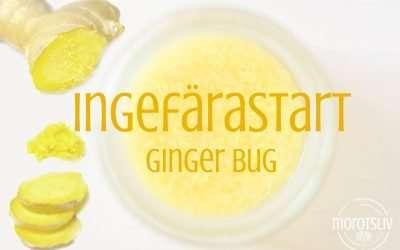 Ingefärastart (Ginger Bug) för fermenterad lemonad