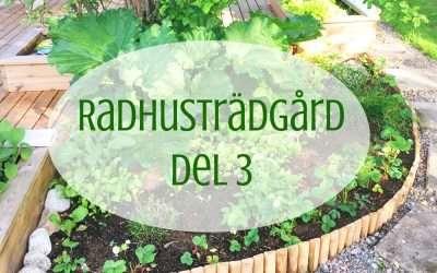 Projekt: Radhusträdgård del 3