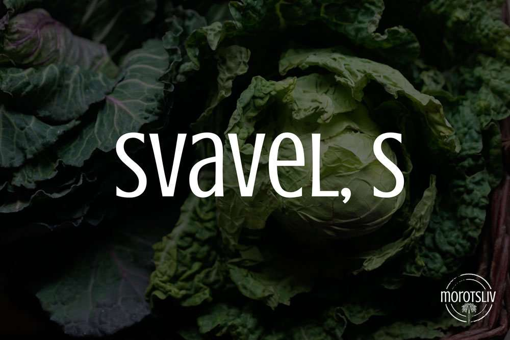Svavel, S (MSM)