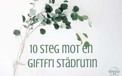 Nybörjarguiden: 10 steg till ekostädning