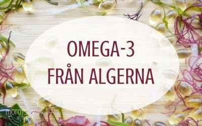 Omega-3 från algerna