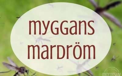 Myggans mardröm